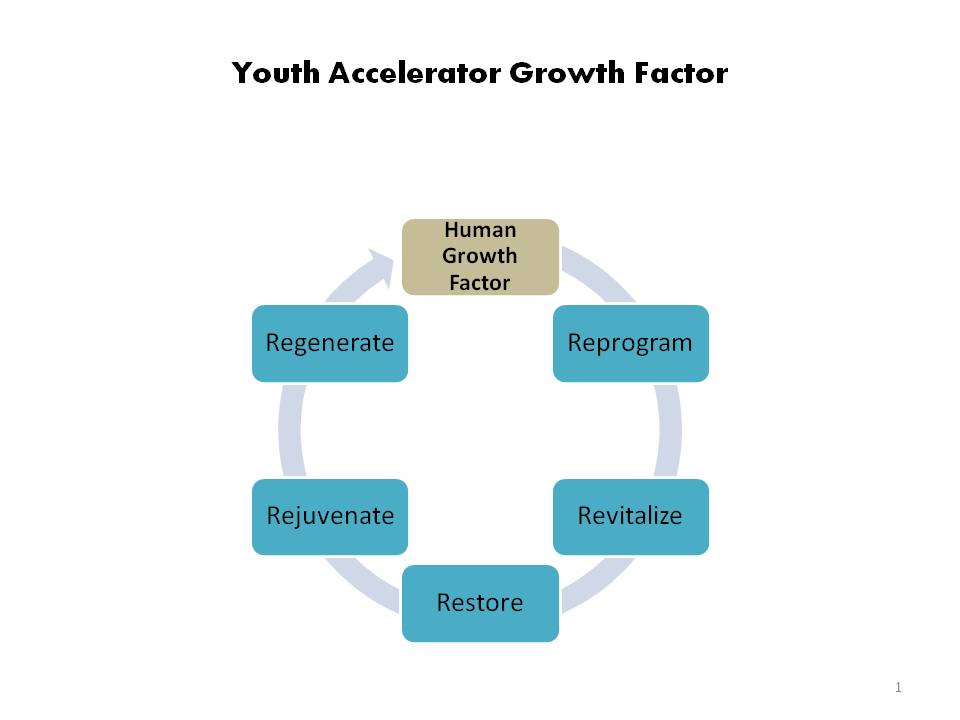 growth-factor-web-image.jpg
